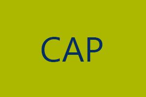 cap_300